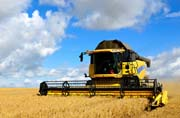 More of the Same for U.S. Tractor & Combine Sales: AEM Report
