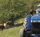 U.S. September Tractor Sales: Smaller Machines Still Lead, but Larger Sizes Rebound