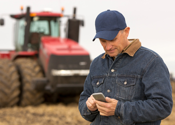 Farmer with smart phone in field